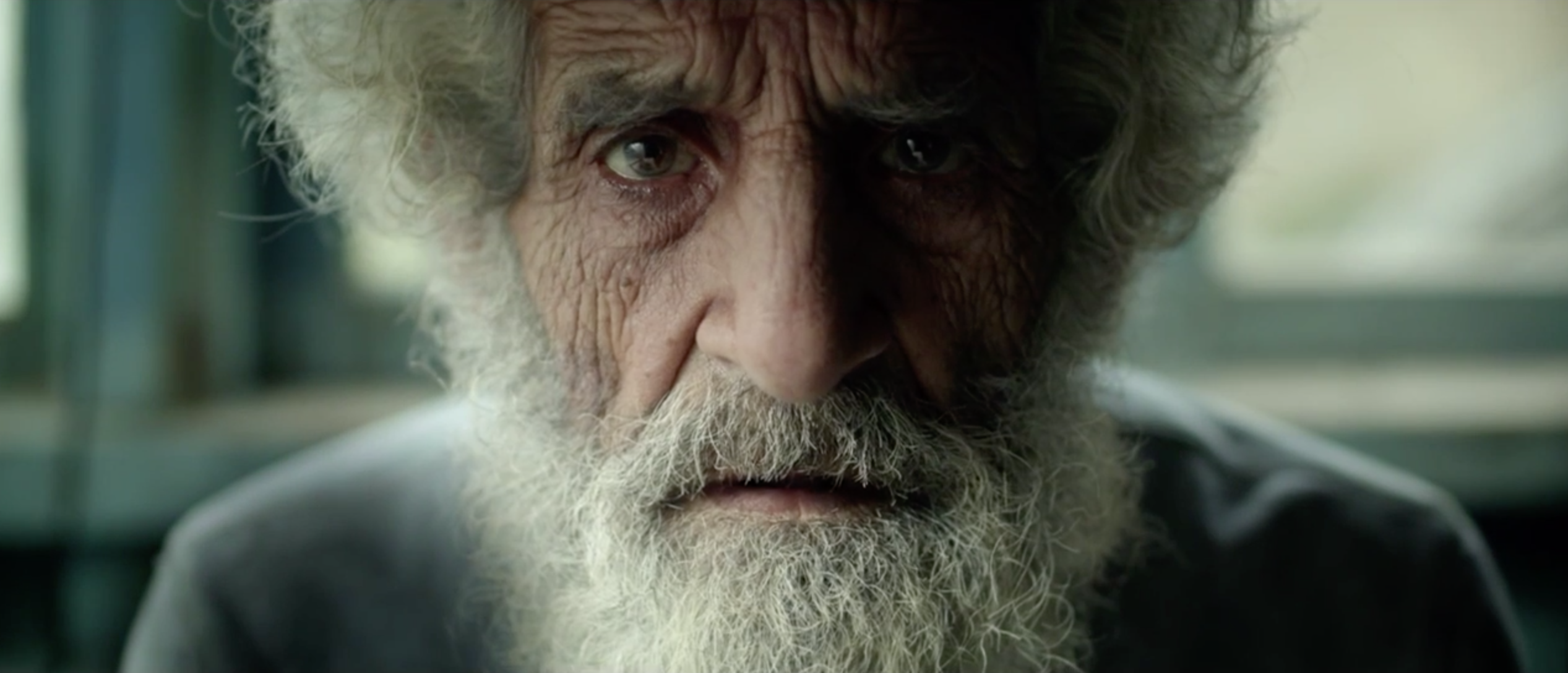 file magazine the last one is a short film directed by sergey pikalov about the last living world war ii veteran the old man had outlived everyone
